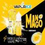 VAPORICE MANGO 40 ML Mix&Vape
